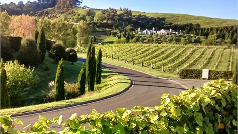 Luxury Airport & Winery Transfers